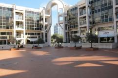 Golda Center
