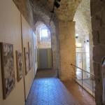 Zeev Matar Web site - Il Ferrone - Sestino & Tozzetto - Museum Okashi - 12 reference picture
